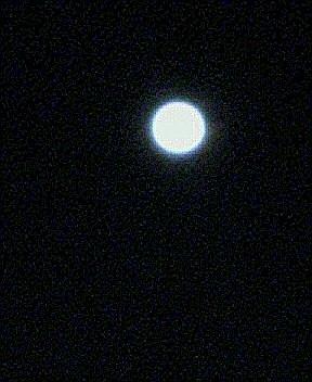 20050819_2041_0000.jpg
